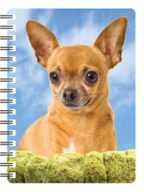 Chihuahua 3D Notebook